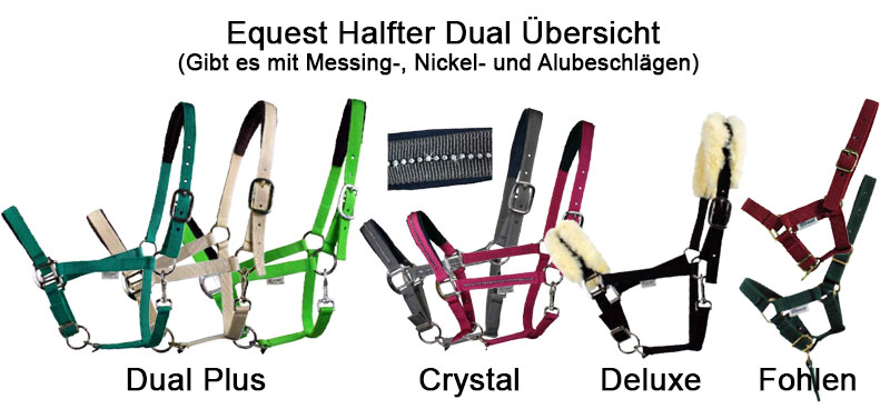 Equest Halfter Regular Plus